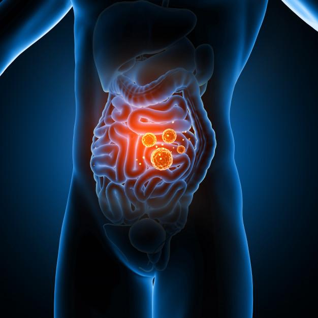 3d male medical figure showing virus cells guts 1048 11875